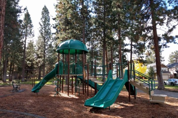 hollygrape park